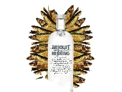 Herring, Absolut